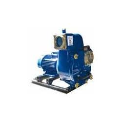 Motopompes centrifuges (Mise en groupe CPI)